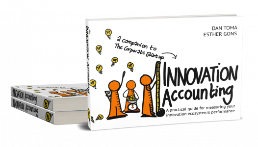 Innovation Accounting book cover